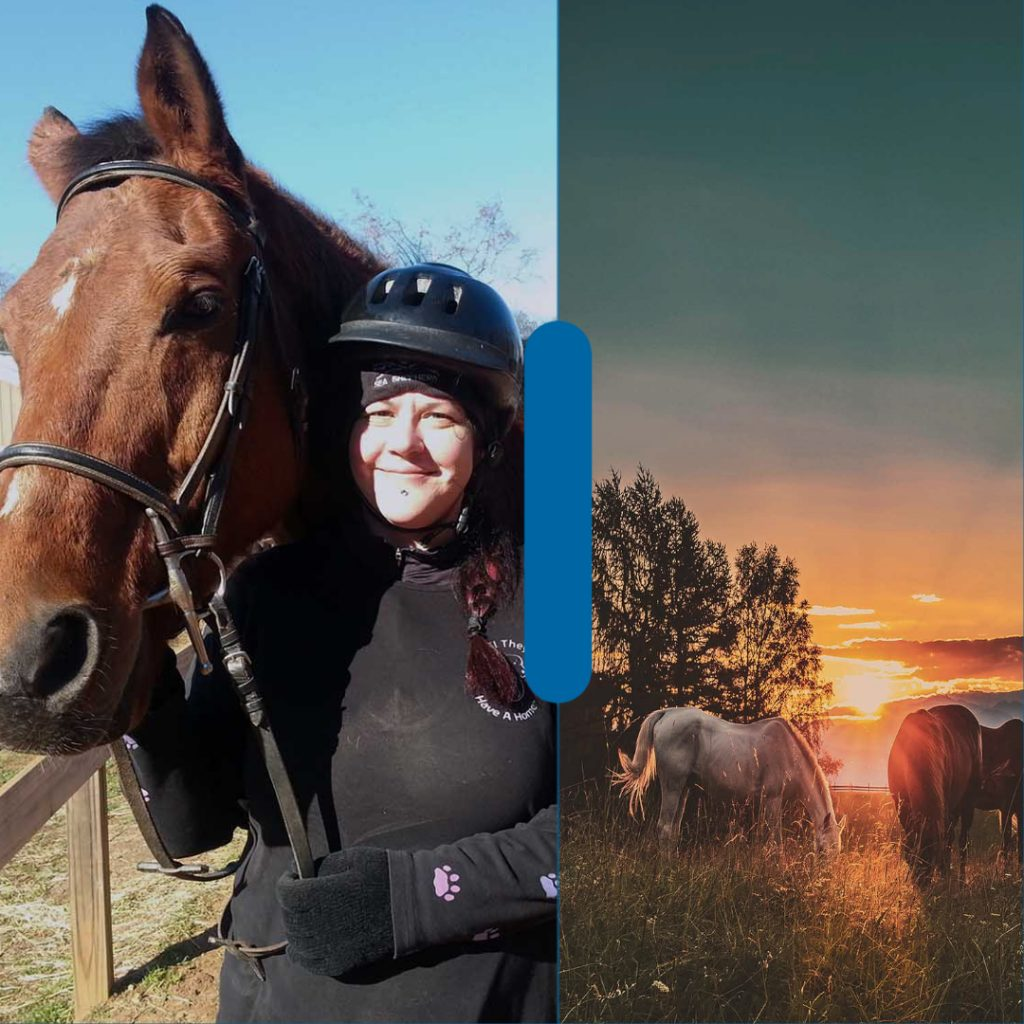 Collage picture of Sarah Lewis with a horse and another image of wild horses.