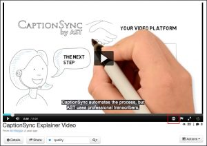 CaptionSync's Kaltura MediaSpace integration, Kaltura MediaSpace player